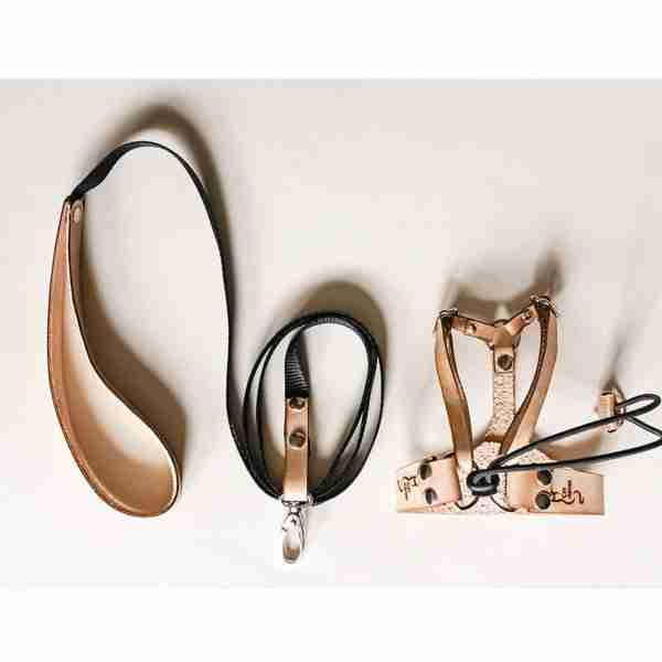 Leather Cat Harness and Leash